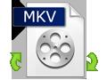 Convertire MOV in MKV