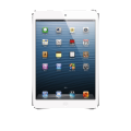 Visualizzare WMV su iPad Mini